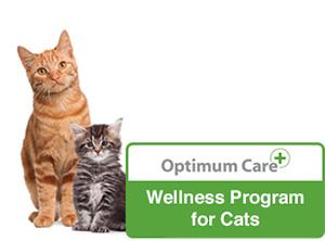 wellness-cats